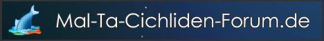 Mal-Ta-Cichliden-Forum.de